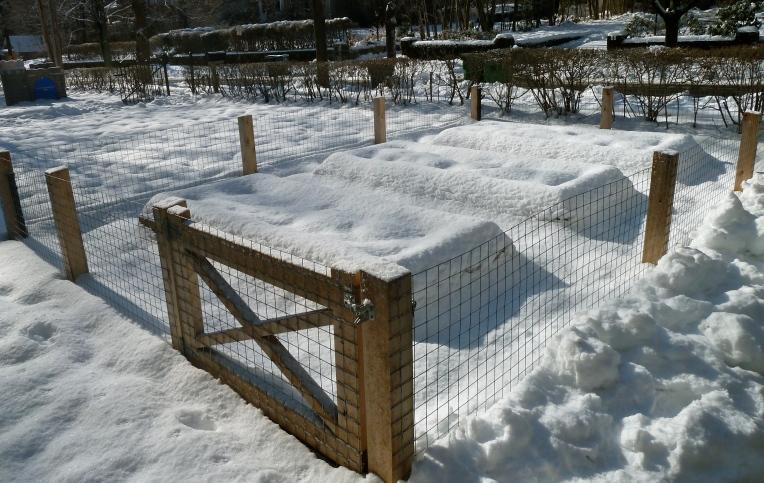 my.garden.under.snow
