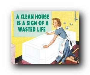 clean house, wasted life