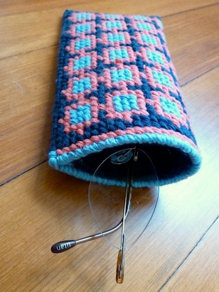 finished glasses case