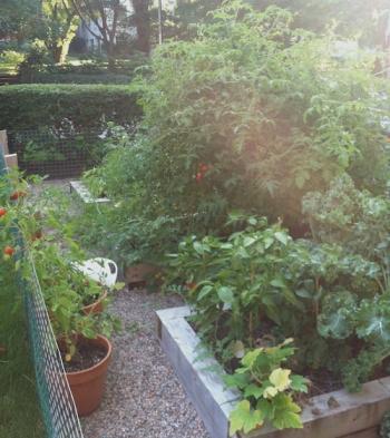 garden.september.small