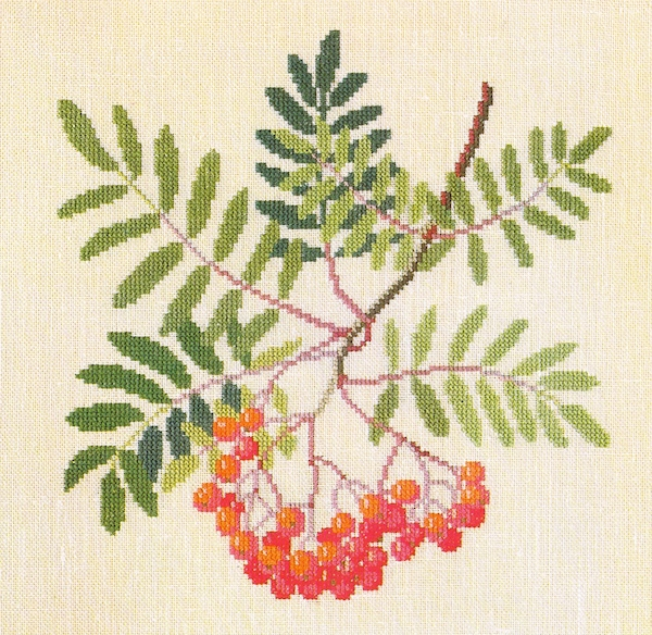 Mountain Ash by Gerda Bentgsson. From Dye PLants nad Fruits in Cross -stitch
