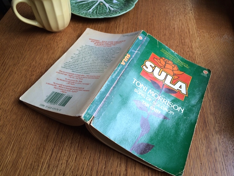 morning reading sula