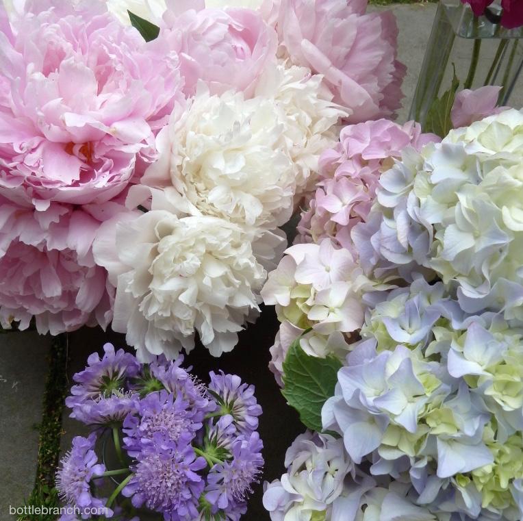 abundant flowers 2015
