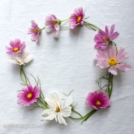 cosmos wreath