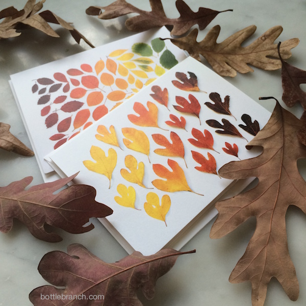 autumn leaf photo cards bottle branch blog