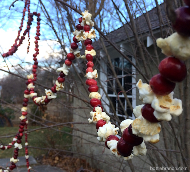 cranberry popcorn garlands bottle branch blog