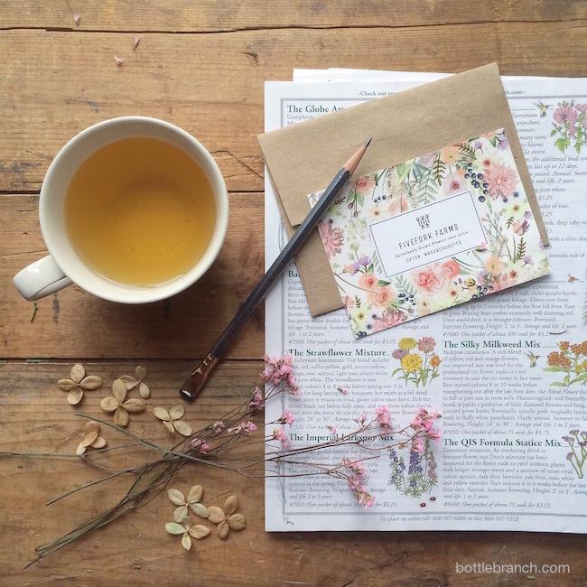 garden planning on bottle branch blog