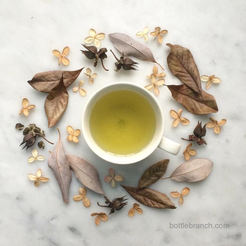 happy tea time in february bottle branch blog