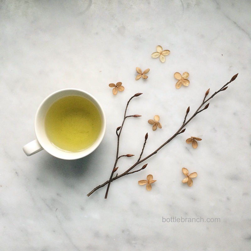 happy tea time january bottle branch blog