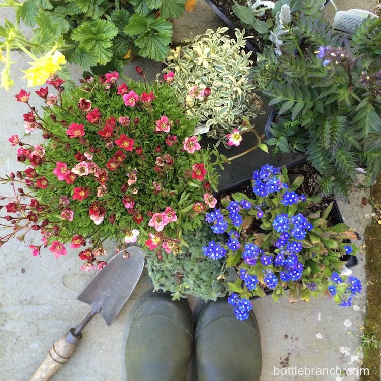 ready for the garden bottle branch blog