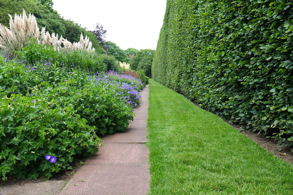 royal botanic garden edinburg