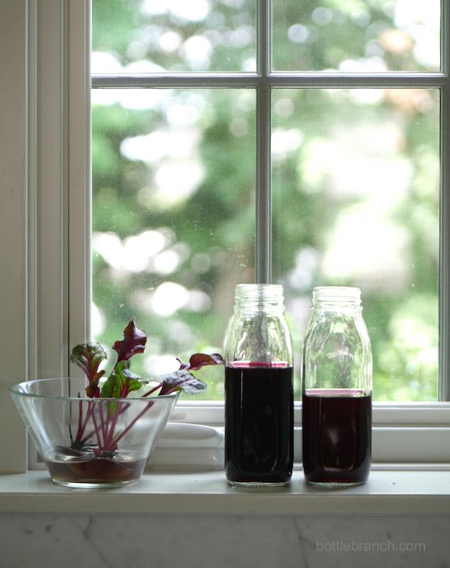 beet dye and beet tops bottle branch blog
