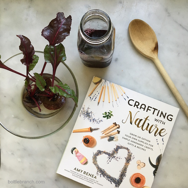 crafting with nature book bottle branch blog