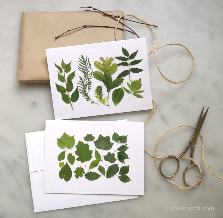green-leaf-cards-by-bottle-branch