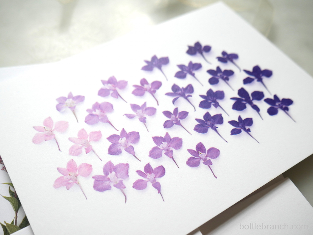 larkspur-ombre-card-by-bottle-branch