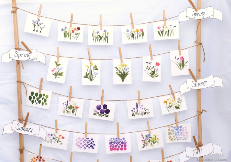 organizing-flower-cards-by-season-bottle-branch