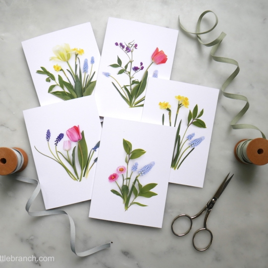 spring-tulip-cards-from-bottle-branch