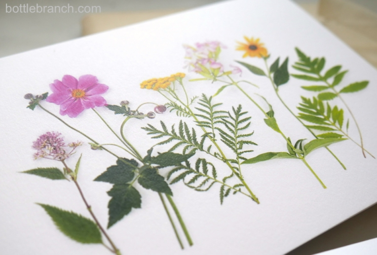 wildflowers-card-close-up-bottle-branch