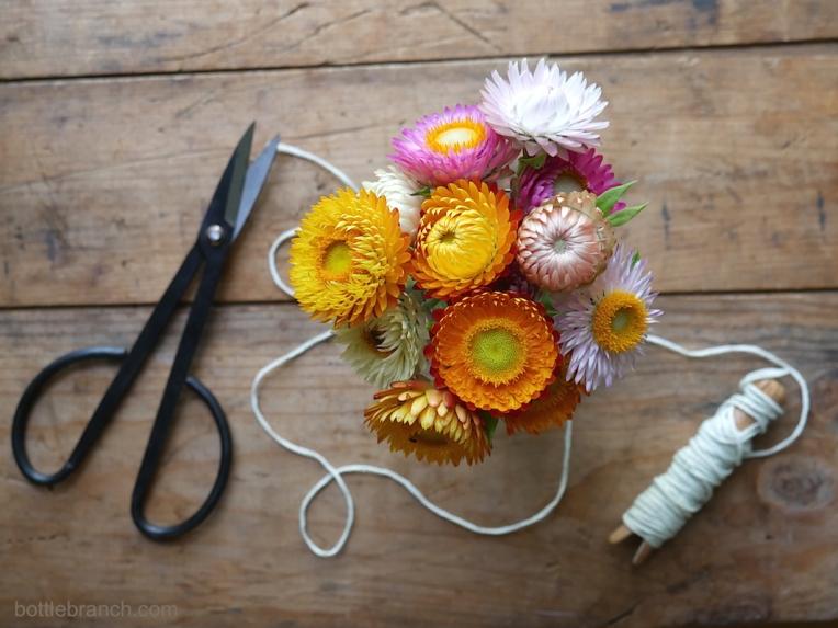 bouquet-of-strawflowers-bottle-branch-blog