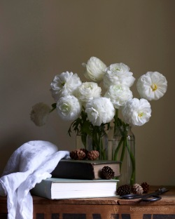 blowsy-ranunculus-still-life-bottle-branch