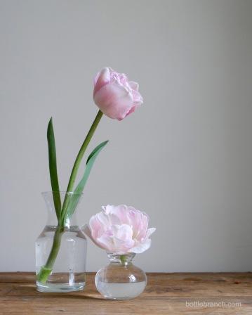 pink-tulips-bottle-branch