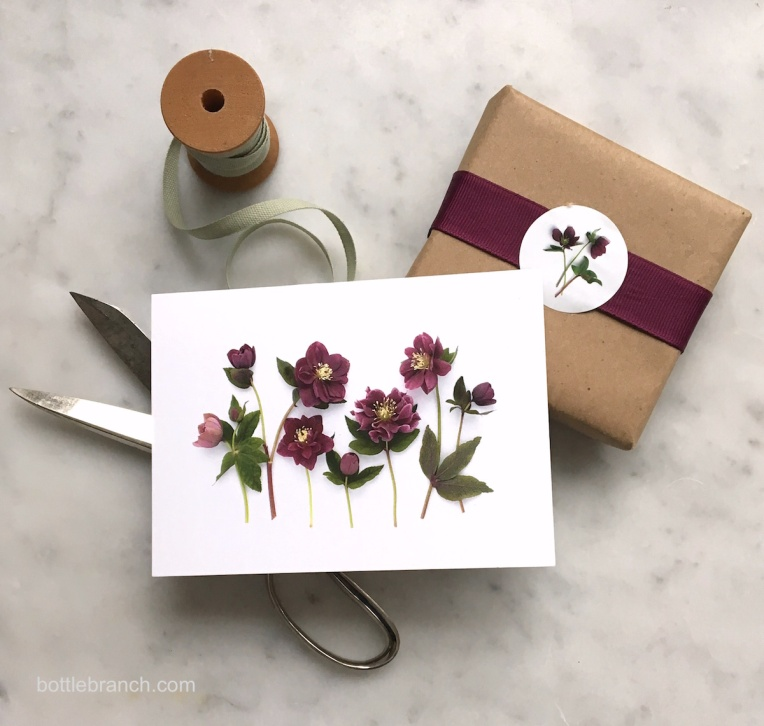 hellebores card bottle branch blog