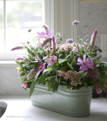 septmber flowers arrangement bottle branch