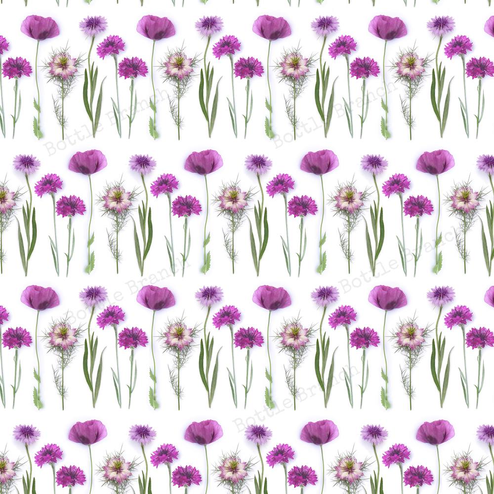 purple flowers repeating pattern