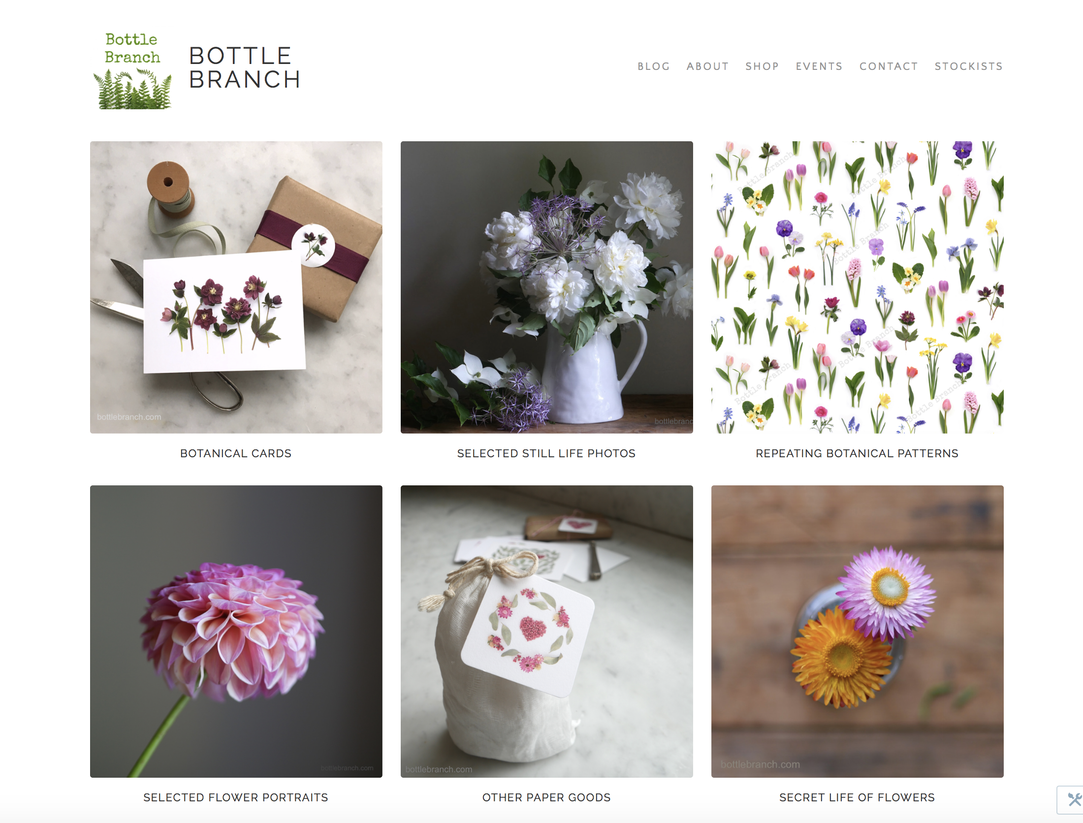 Thumbnail of Bottle Branch home page