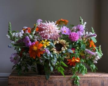 Snapdragons, cosmos, tithonia, assorted dahlias, celosia spicata, borage, rudbeckia 'Prairie Sun', tomato plant leaves, parsley leaves,