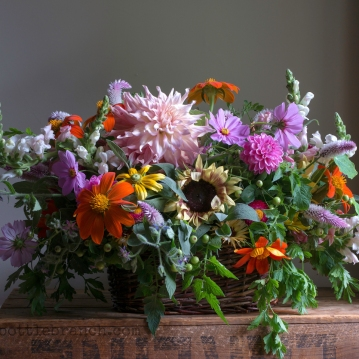 Snapdragons, cosmos, tithonia, assorted dahlias, celosia spicata, borage, rudbeckia 'Prairie Sun', tomato plant leaves, parsley leaves,