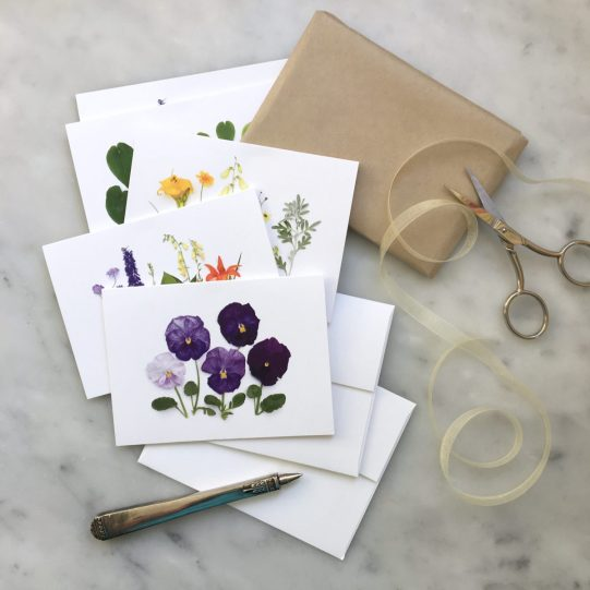 set of summer cards 2016 by bottle branch
