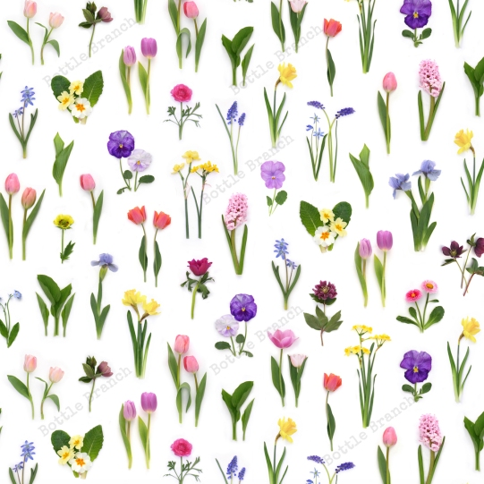 spring flowers repeating pattern by bottle branch