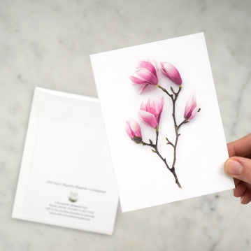 pink magnolia card in hand