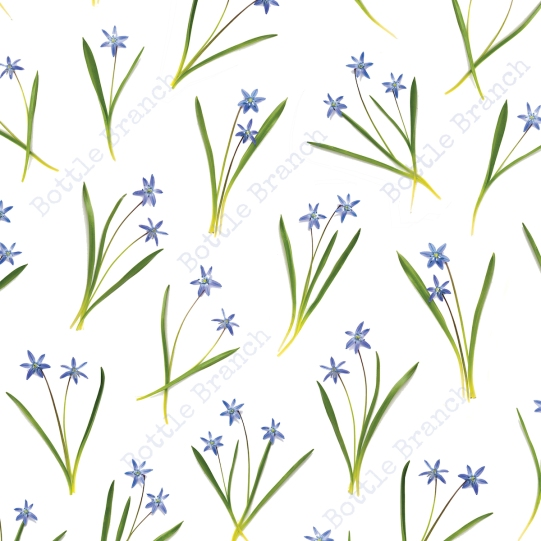 blue scilla flower pattern by elizabeth pyle