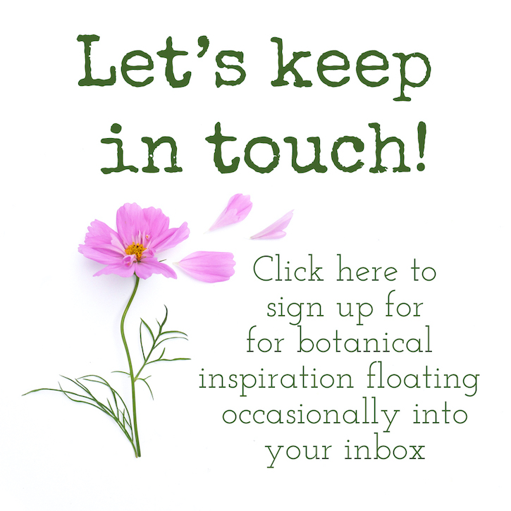 let's keep in touch, update 2021 crop